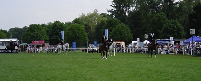 The Ladies' Riding Horse class