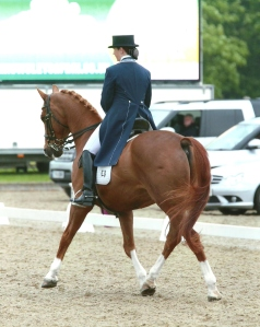 Somerford Park GPS 2015
