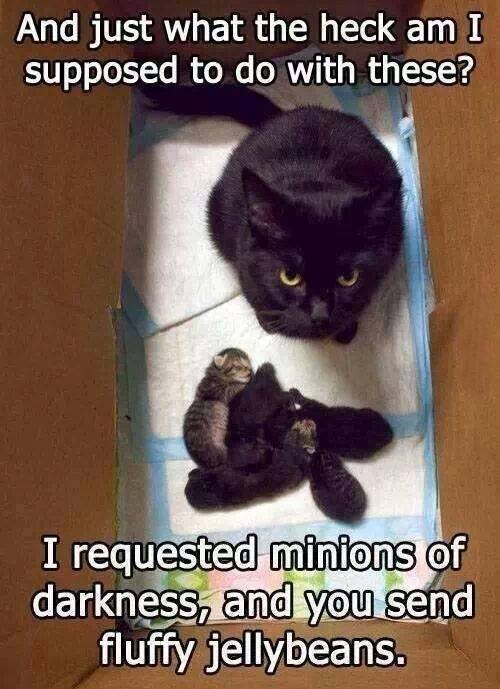 minions of hell