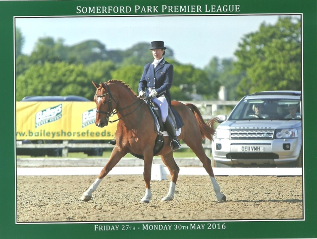 Merlin - Somerford 16