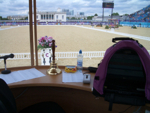 My view, from inside the judge's box